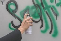 System Anti-Graffiti